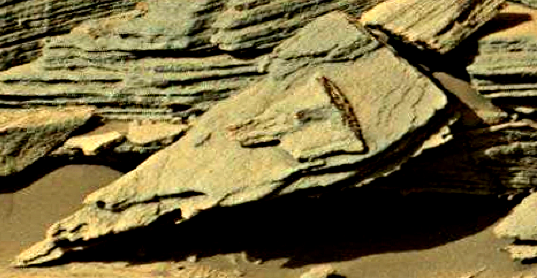 mars sol 1301 anomaly-artifacts 7 was life on mars