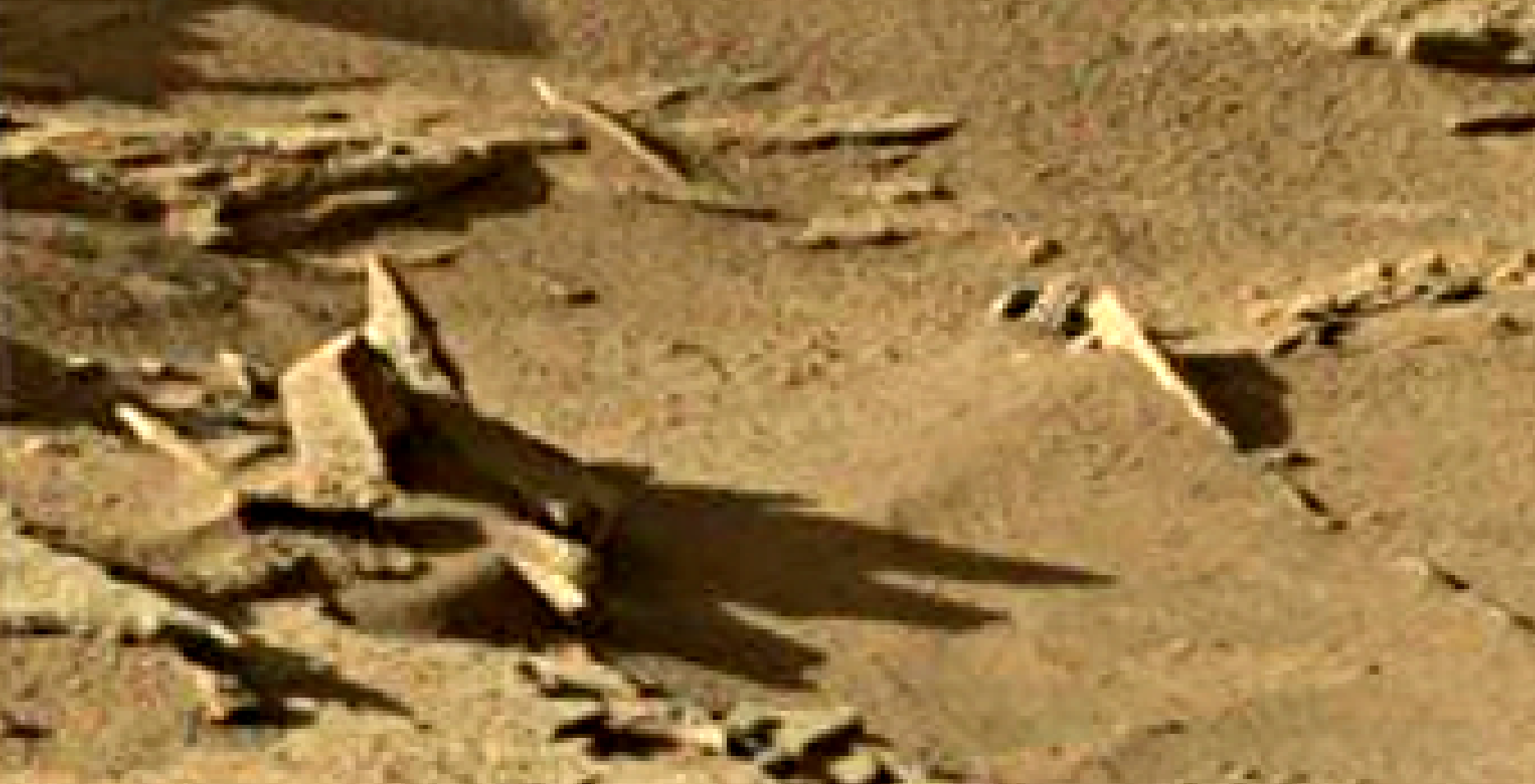 mars sol 1302 anomaly-artifacts 5 was life on mars