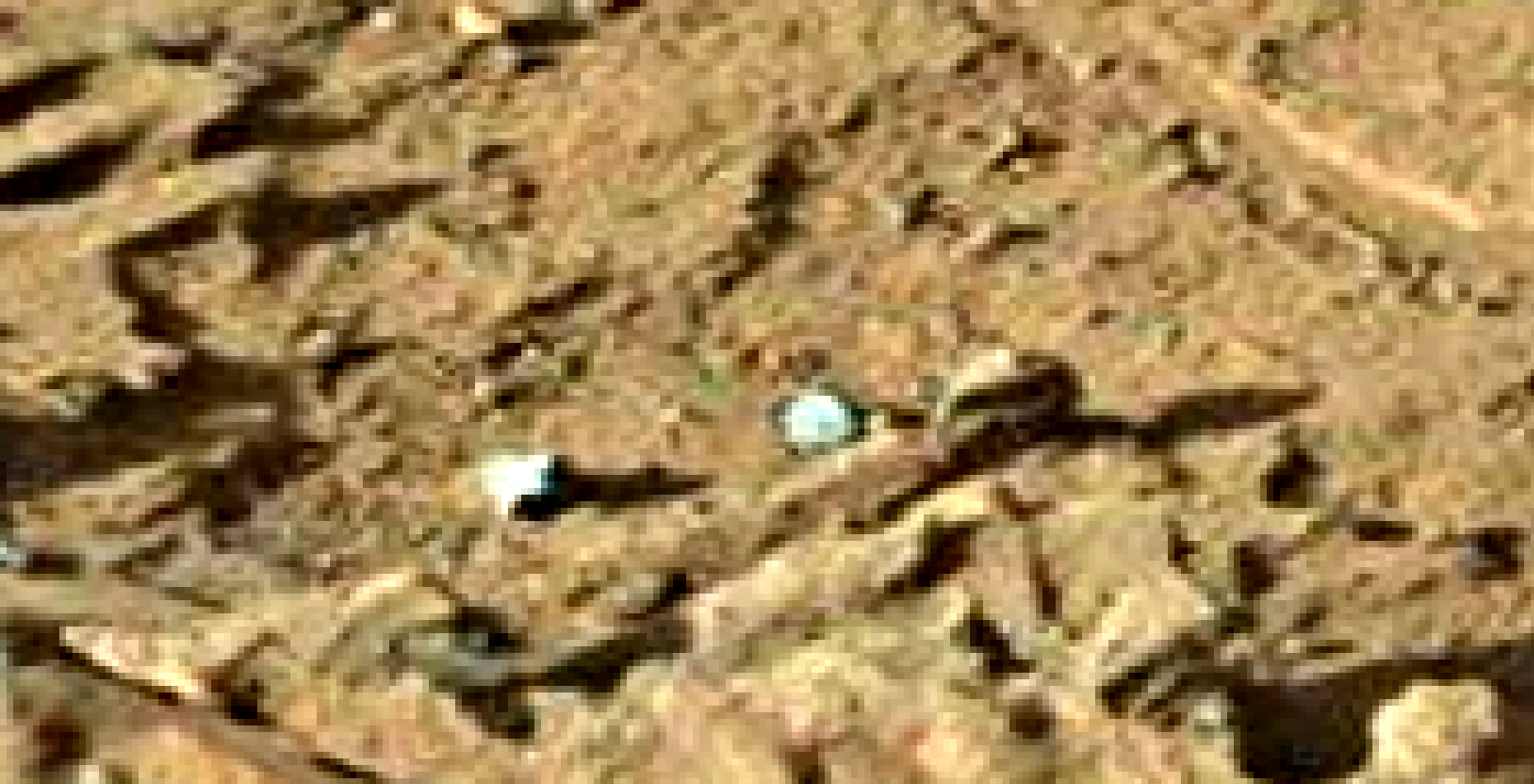 mars sol 1302 anomaly-artifacts 8a was life on mars
