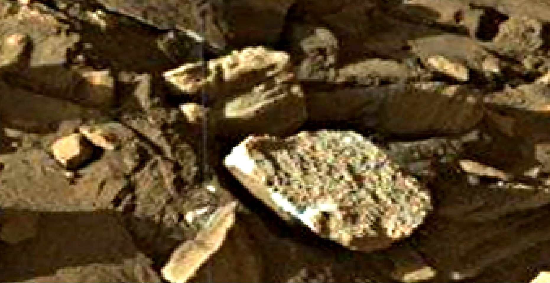mars sol 1302 anomaly-artifacts 9 was life on mars
