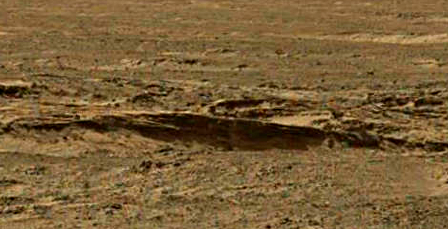 mars sol 1344 anomaly-artifacts 13 was life on mars