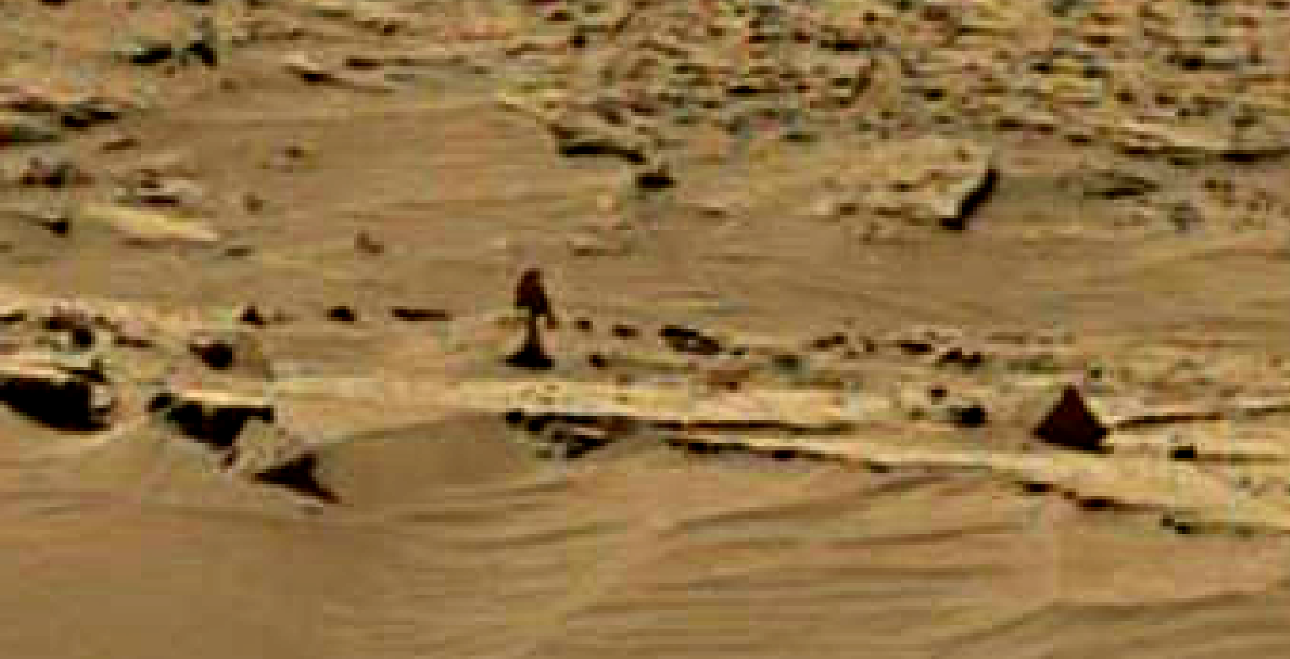 mars sol 1344 anomaly-artifacts 4 was life on mars