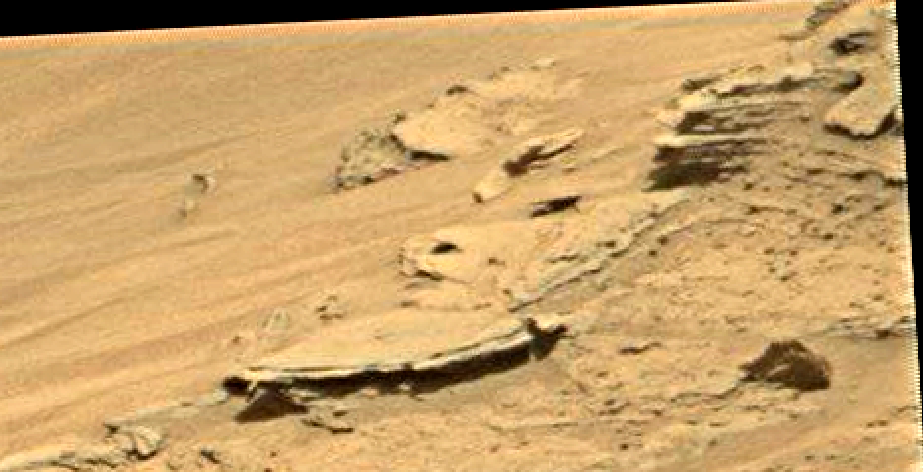 mars sol 1346 anomaly-artifacts 16 was life on mars