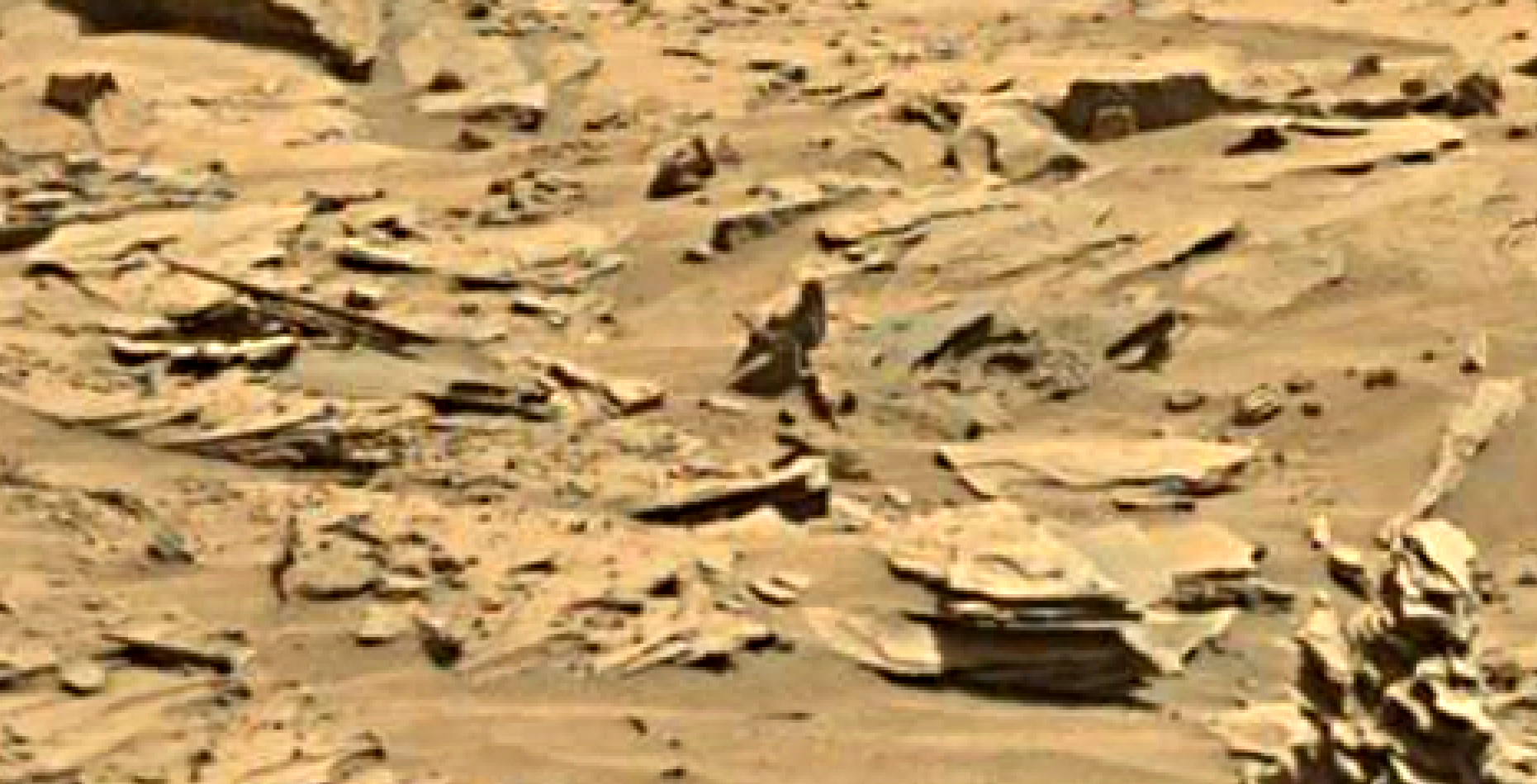 mars sol 1346 anomaly-artifacts 20 was life on mars