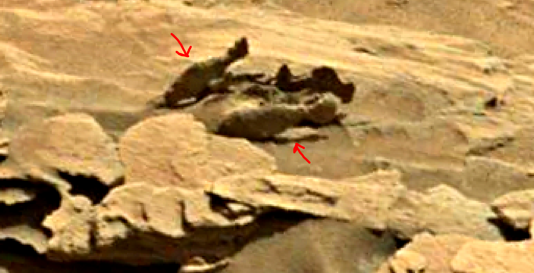 Mars Sol 1349 Curiosity – 1349ML00648100 Image Group ...