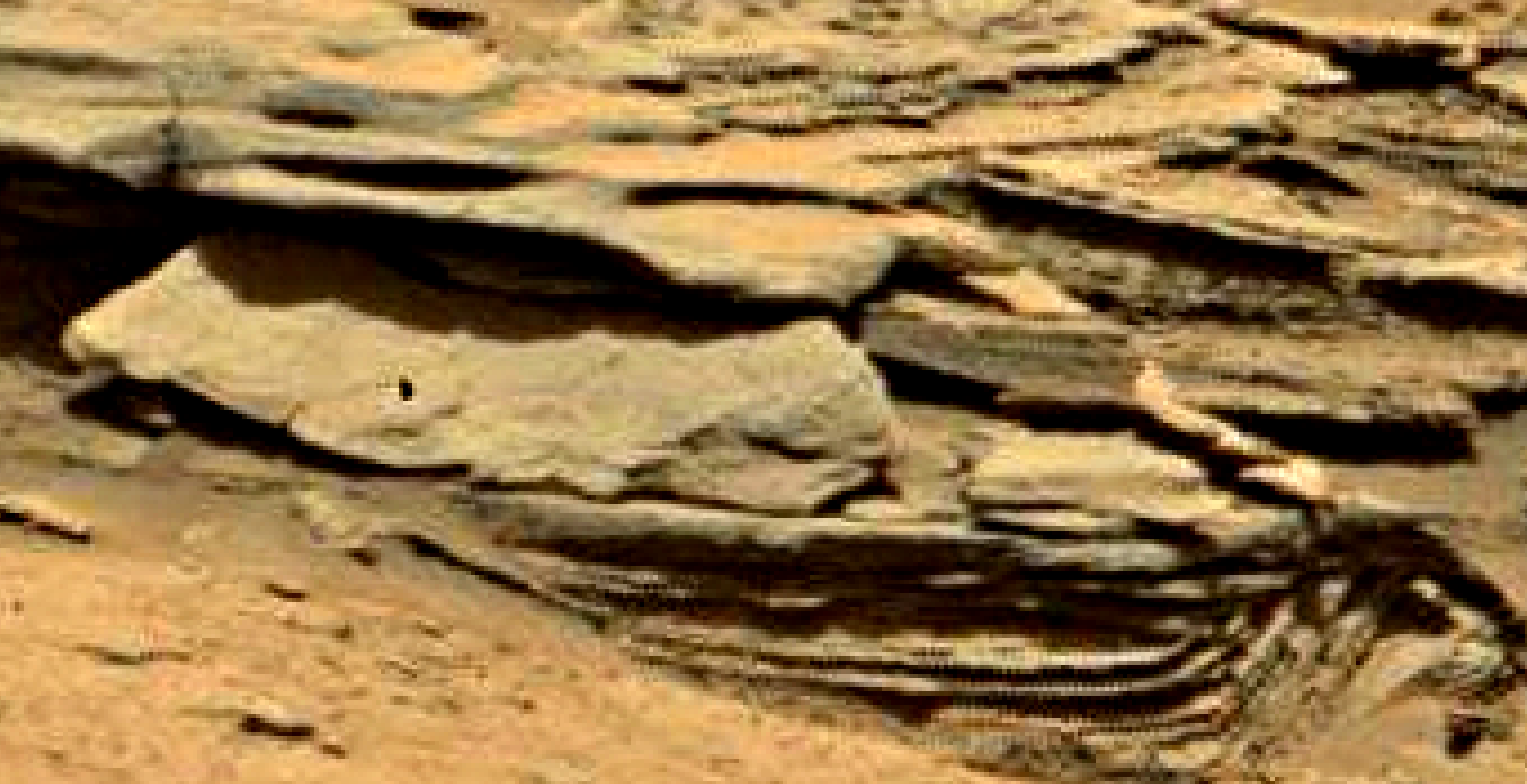 mars sol 1353 anomaly-artifacts 18 was life on mars