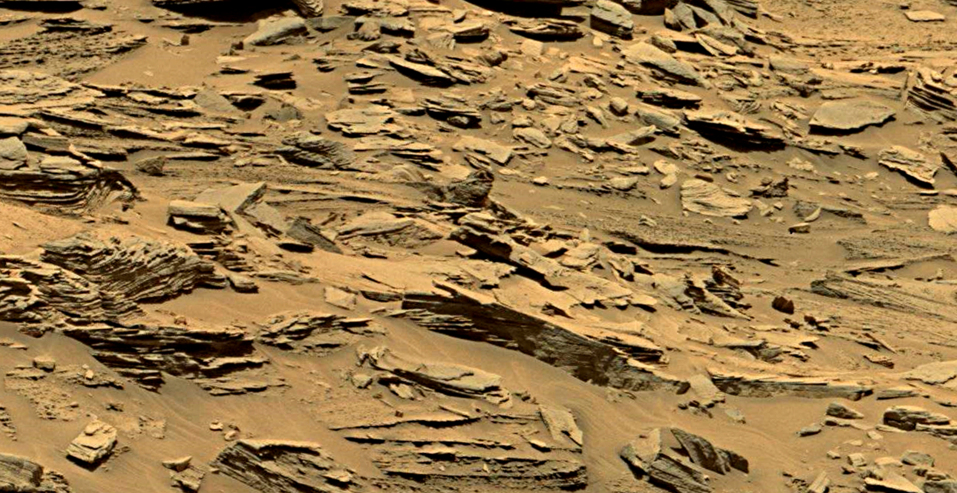 mars sol 1353 anomaly-artifacts 28 was life on mars
