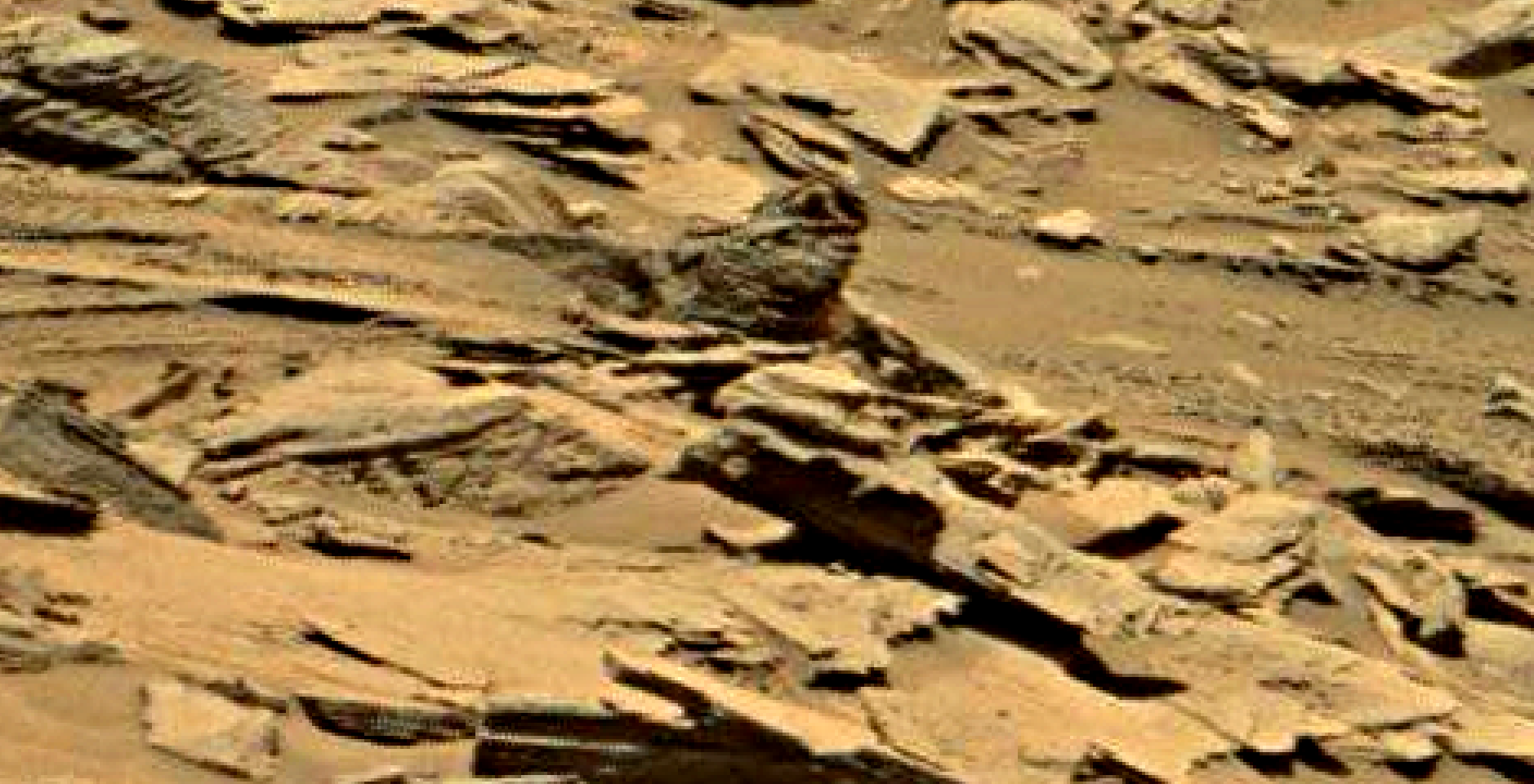 mars sol 1353 anomaly-artifacts 28a was life on mars