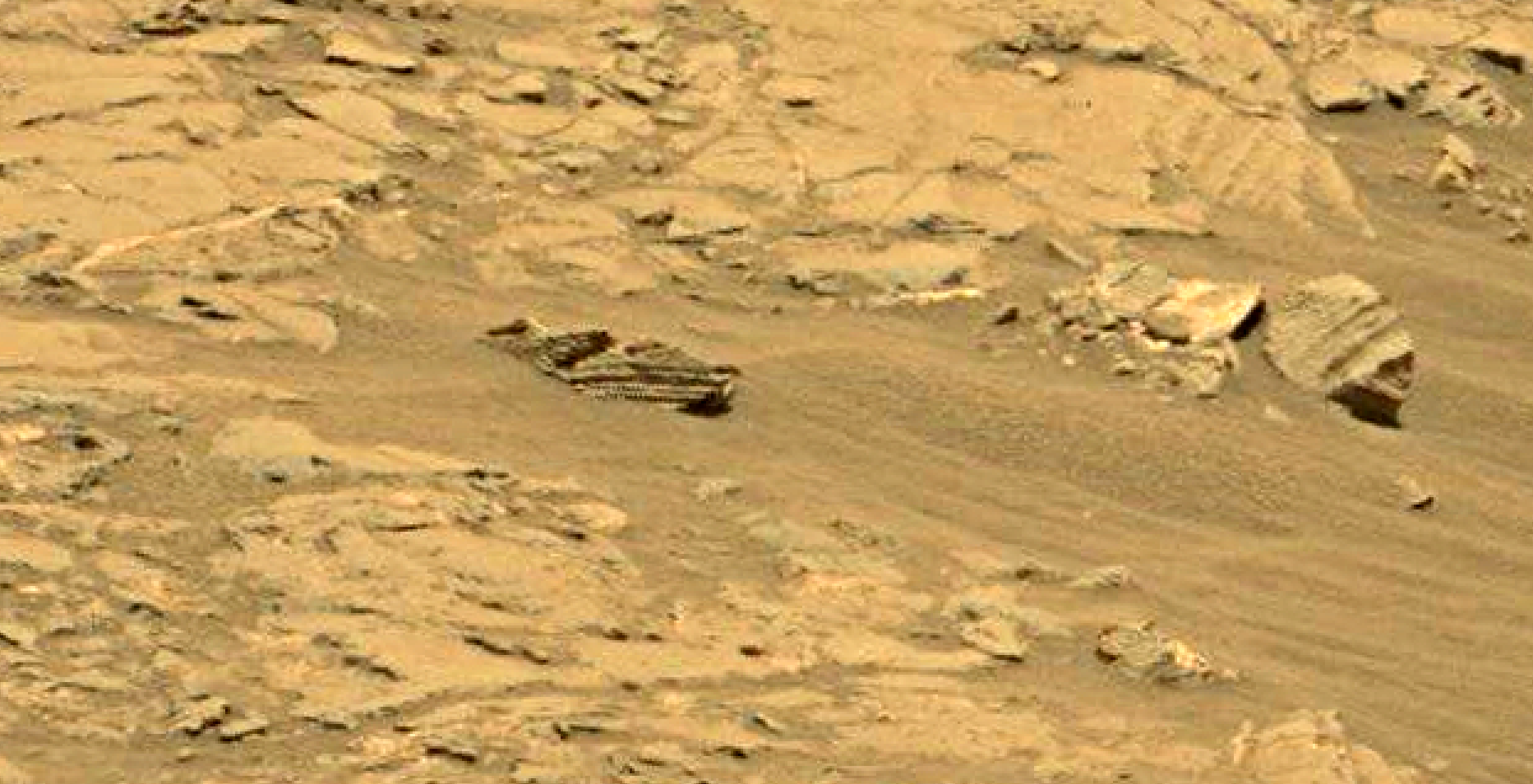 mars sol 1353 anomaly-artifacts 43 was life on mars