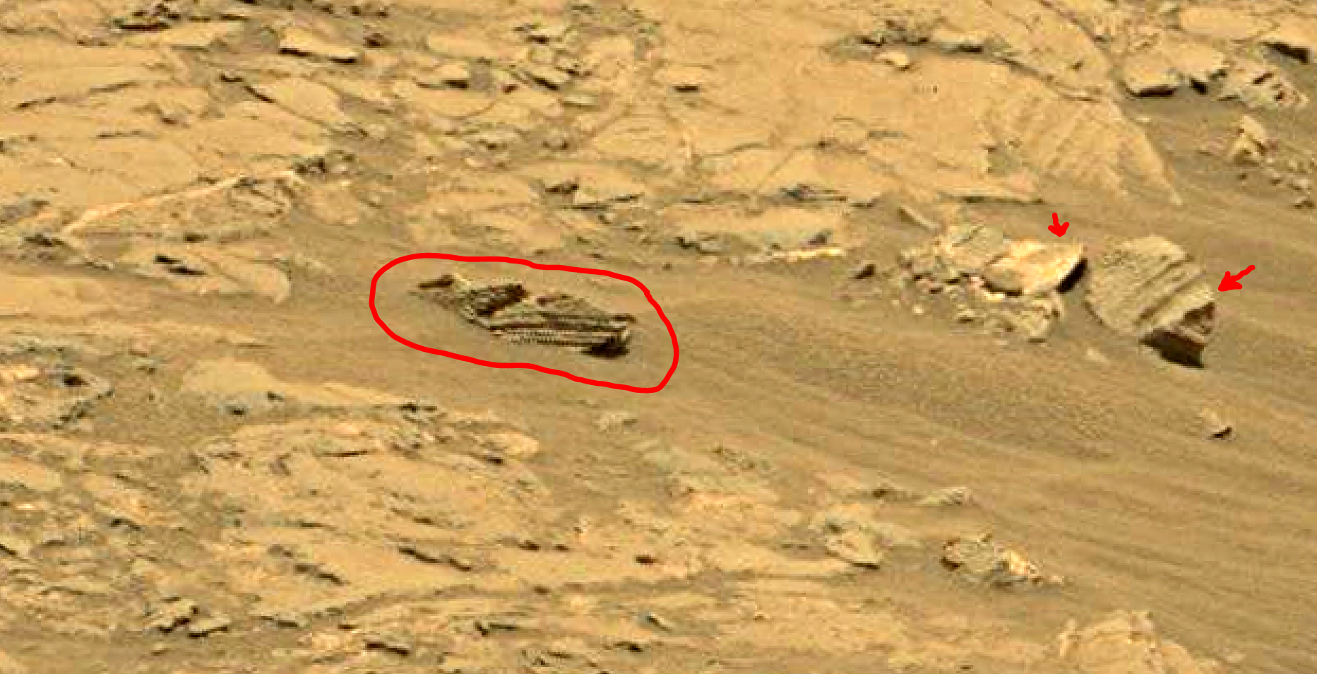 mars sol 1353 anomaly-artifacts 43a was life on mars
