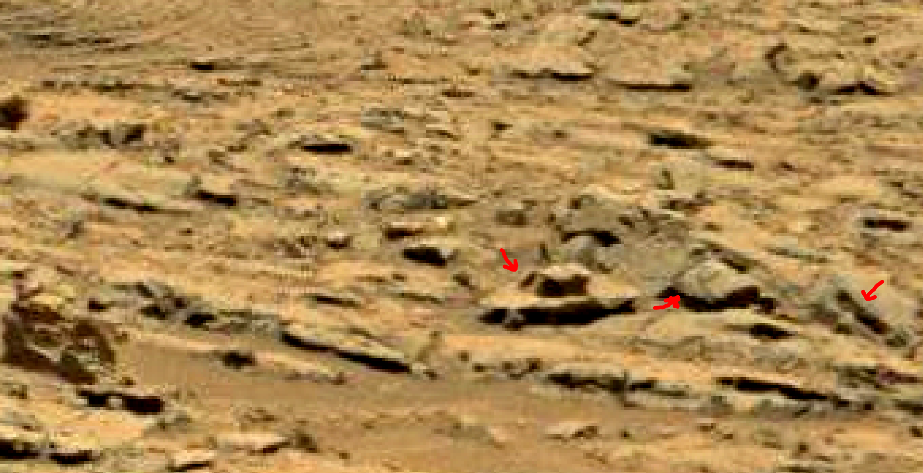 mars sol 1353 anomaly-artifacts 46 was life on mars