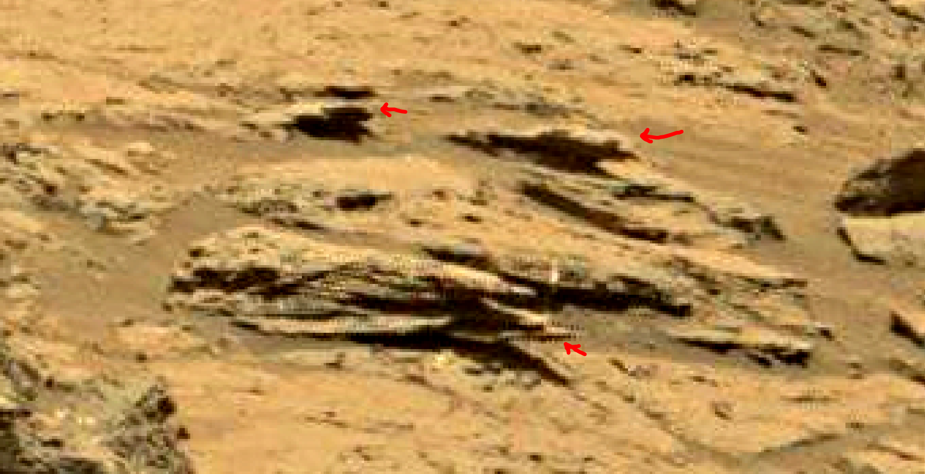mars sol 1353 anomaly-artifacts 49 was life on mars