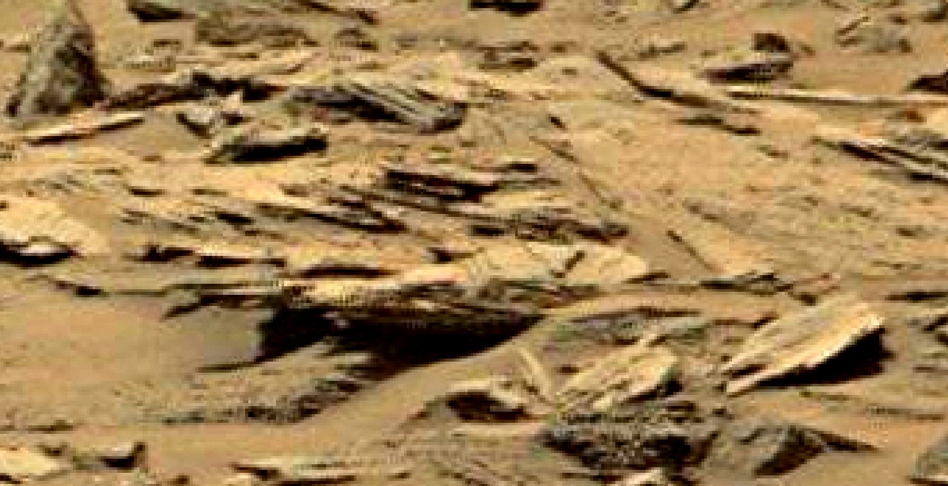 mars sol 1353 anomaly-artifacts 5 was life on mars