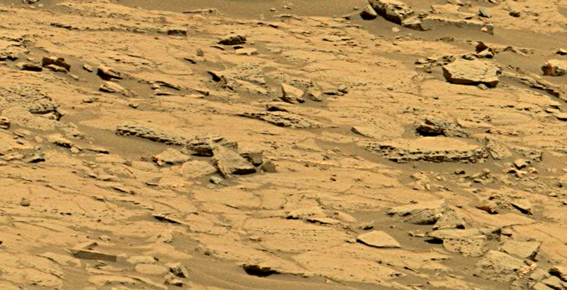mars sol 1353 anomaly-artifacts 58 was life on mars