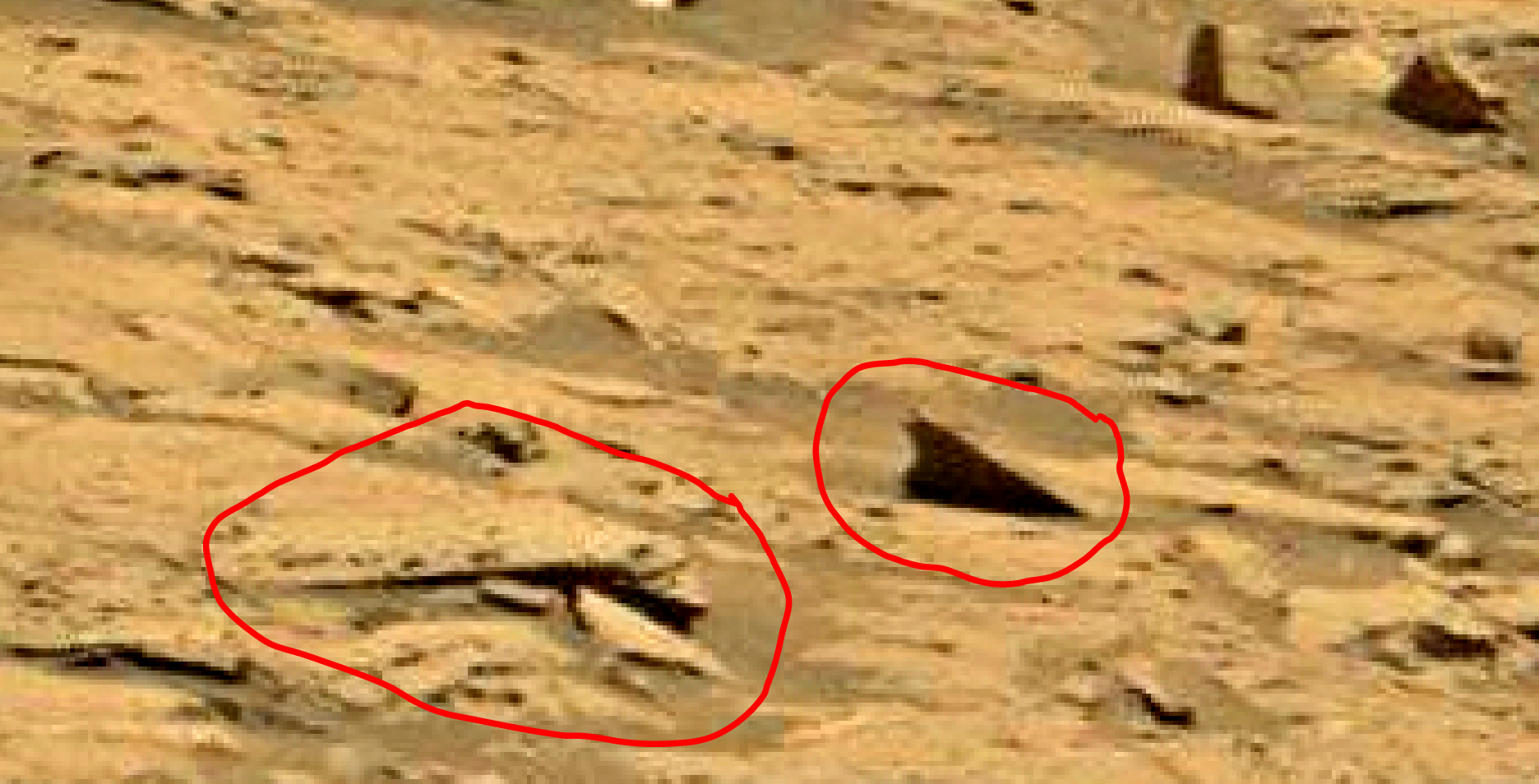 mars sol 1353 anomaly-artifacts 59-1 was life on mars