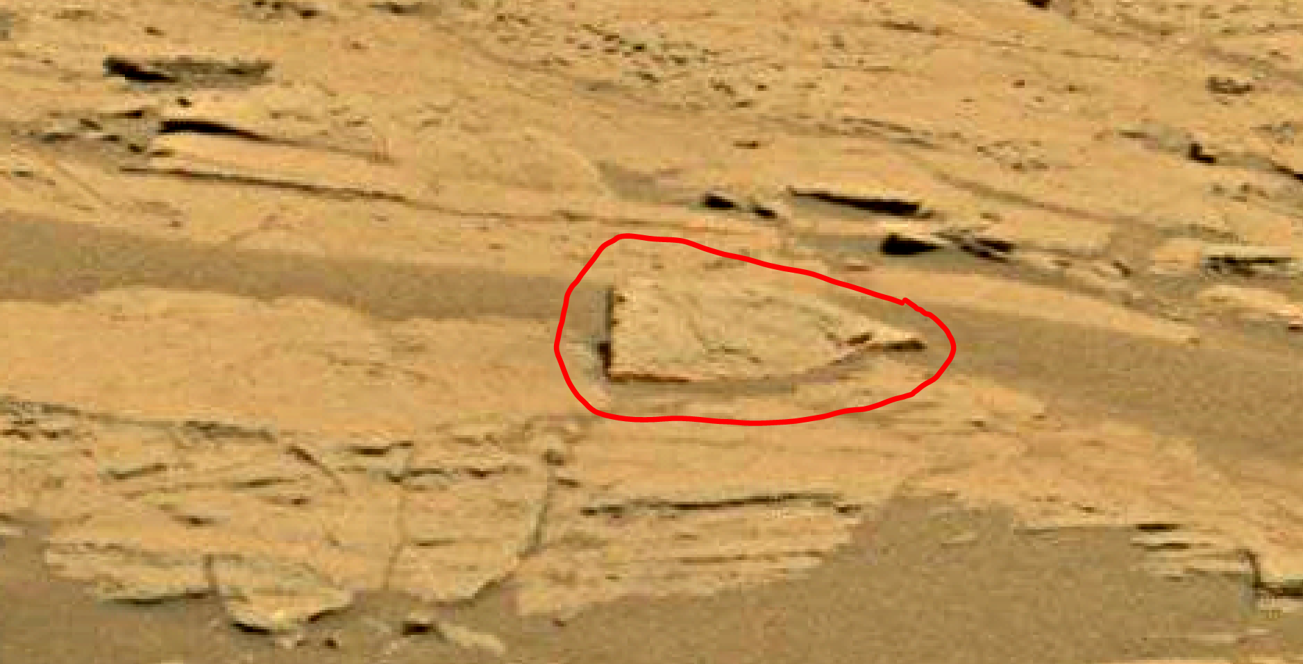 mars sol 1353 anomaly-artifacts 61 was life on mars