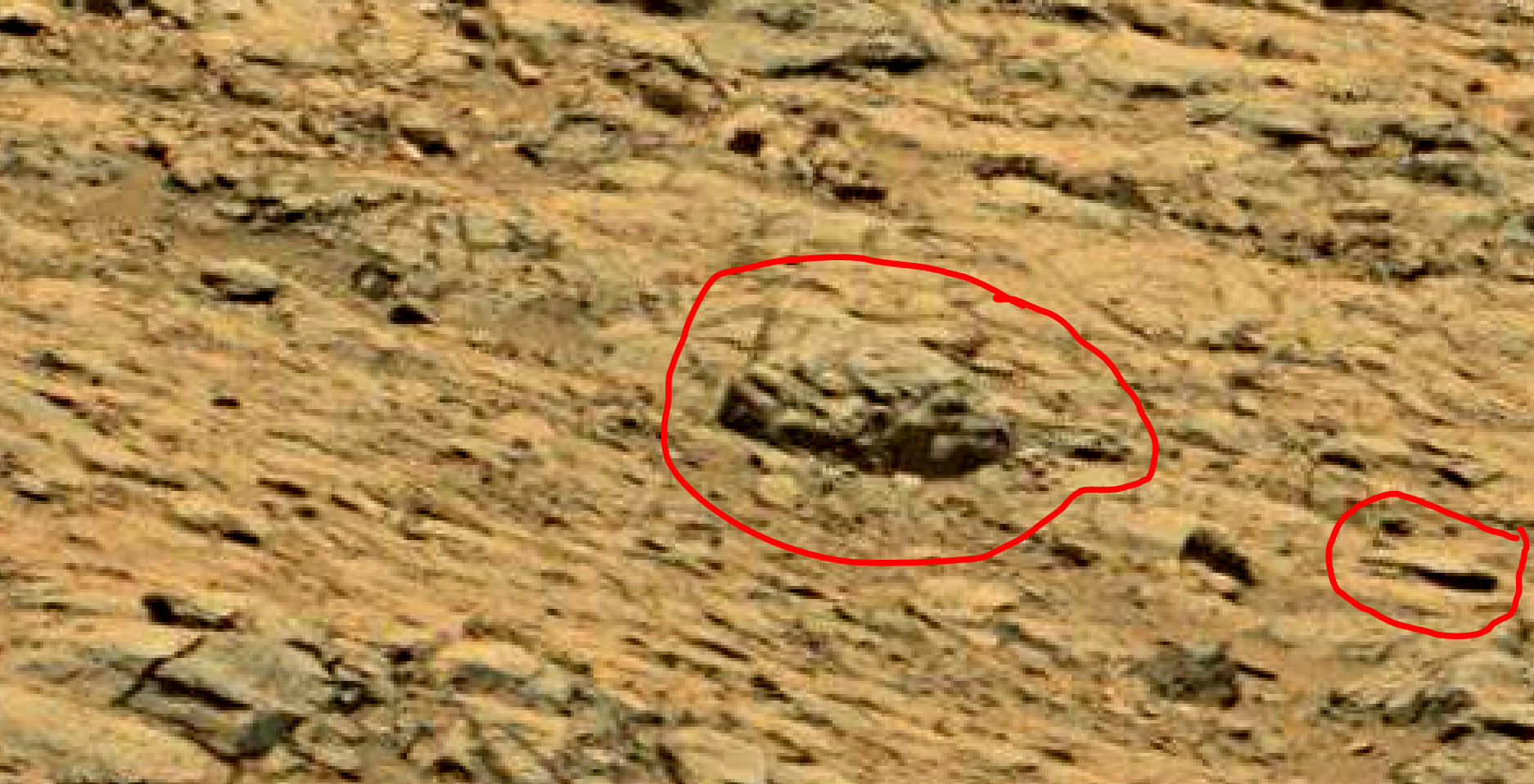 mars sol 1353 anomaly-artifacts 66 was life on mars