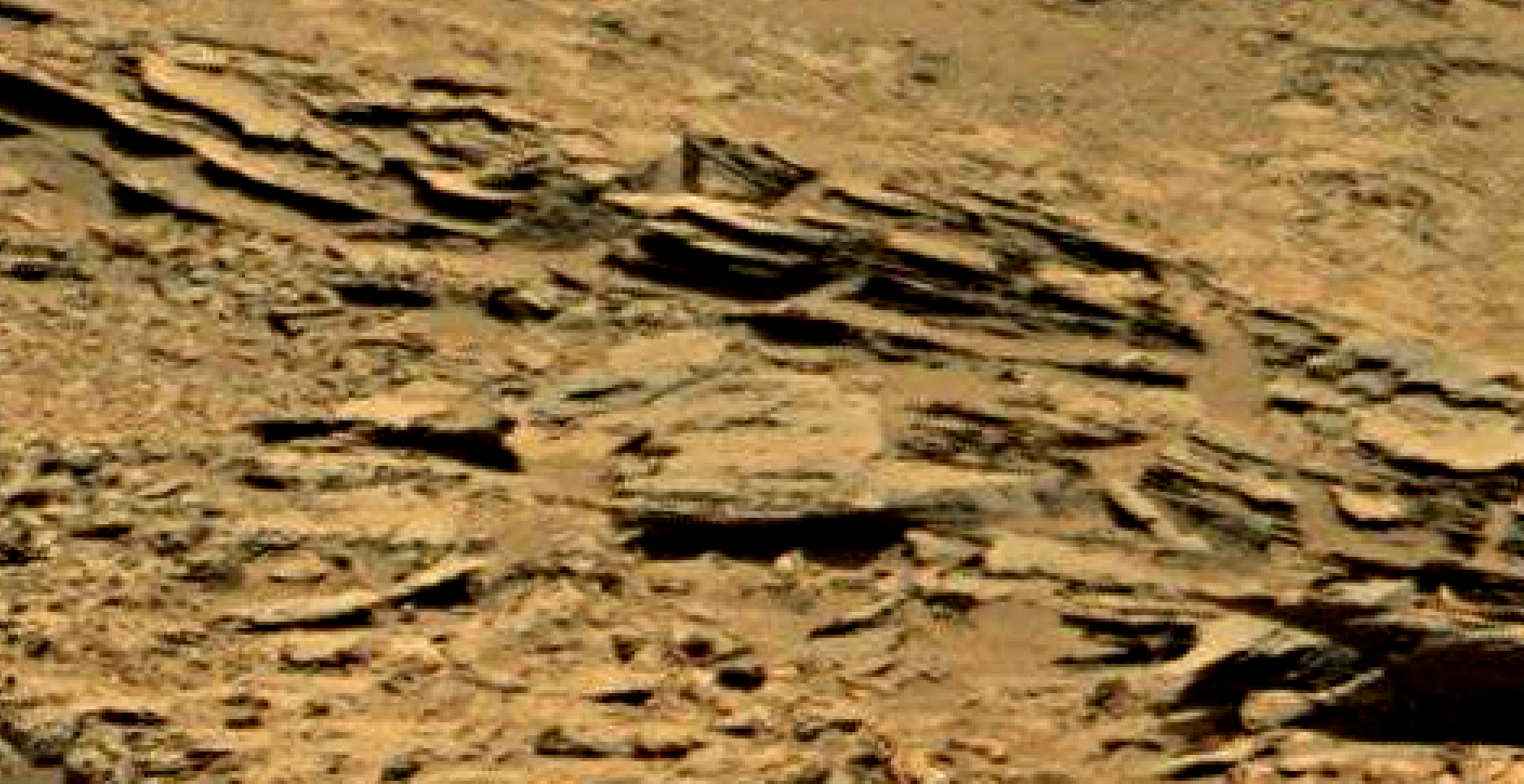 mars sol 1353 anomaly-artifacts 69 was life on mars