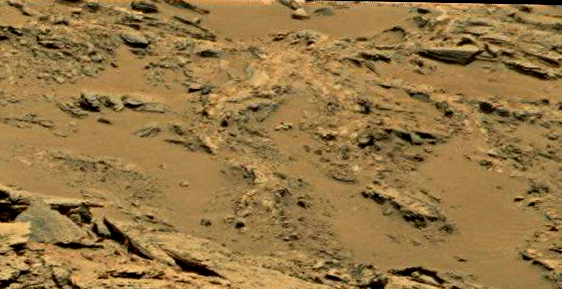 mars sol 1353 anomaly-artifacts 72 was life on mars