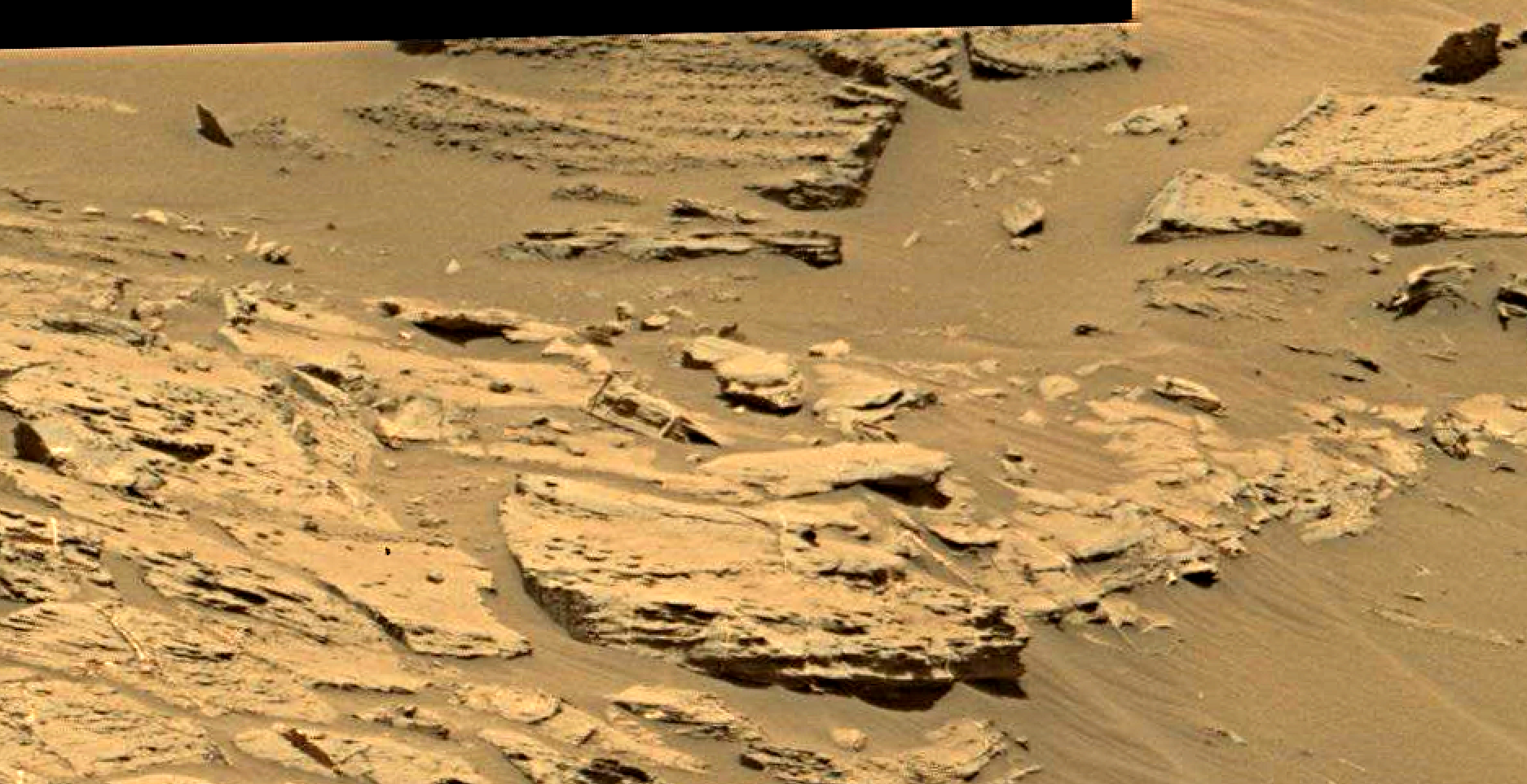 mars sol 1353 anomaly-artifacts 9 was life on mars