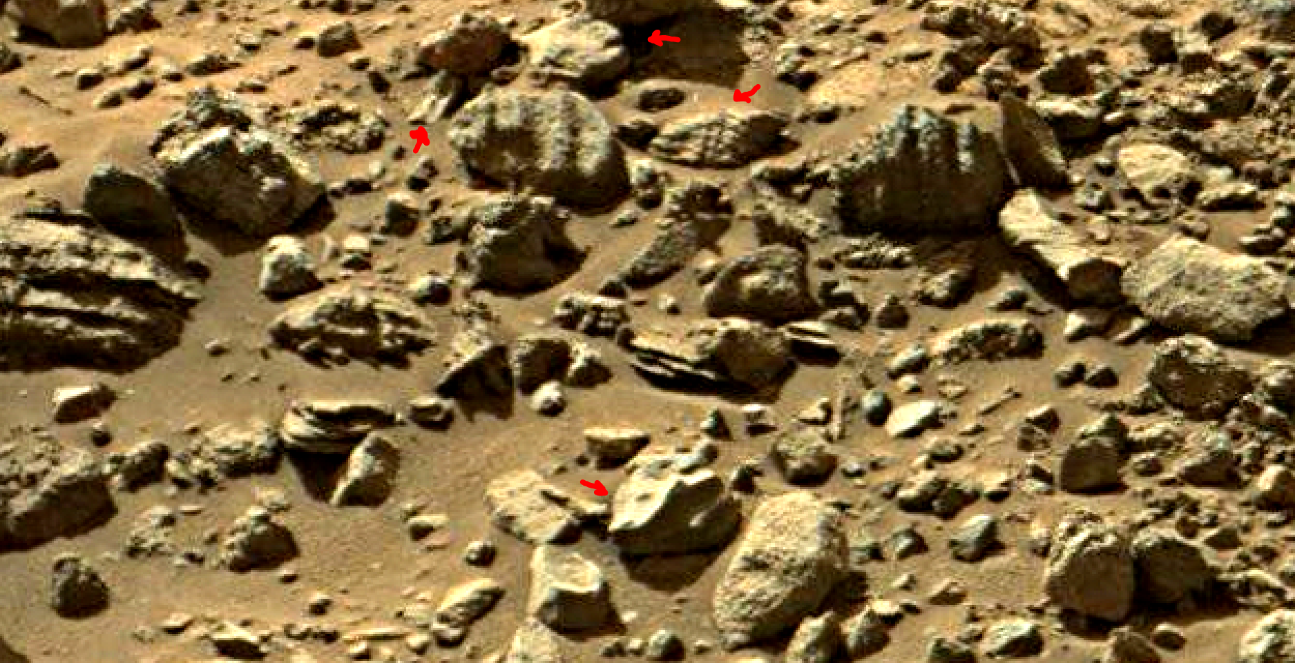 mars sol 1405 anomaly artifacts 11 was life on mars