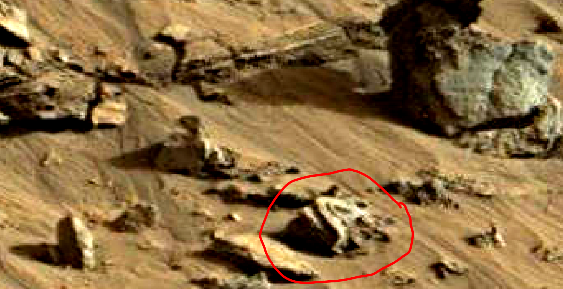 mars sol 1419 anomaly artifacts 10 was life on mars