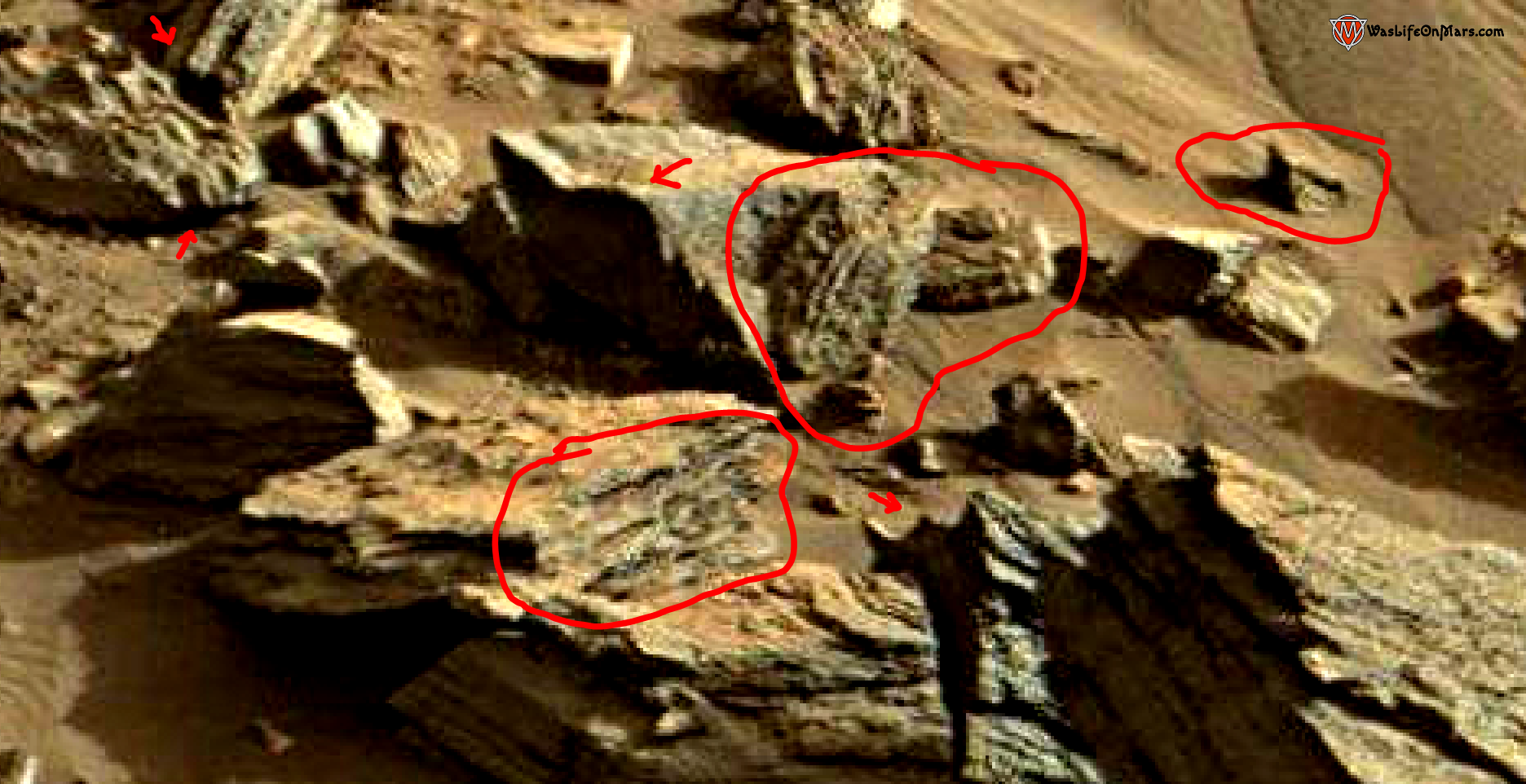 mars sol 1419 anomaly artifacts 11a1 was life on mars