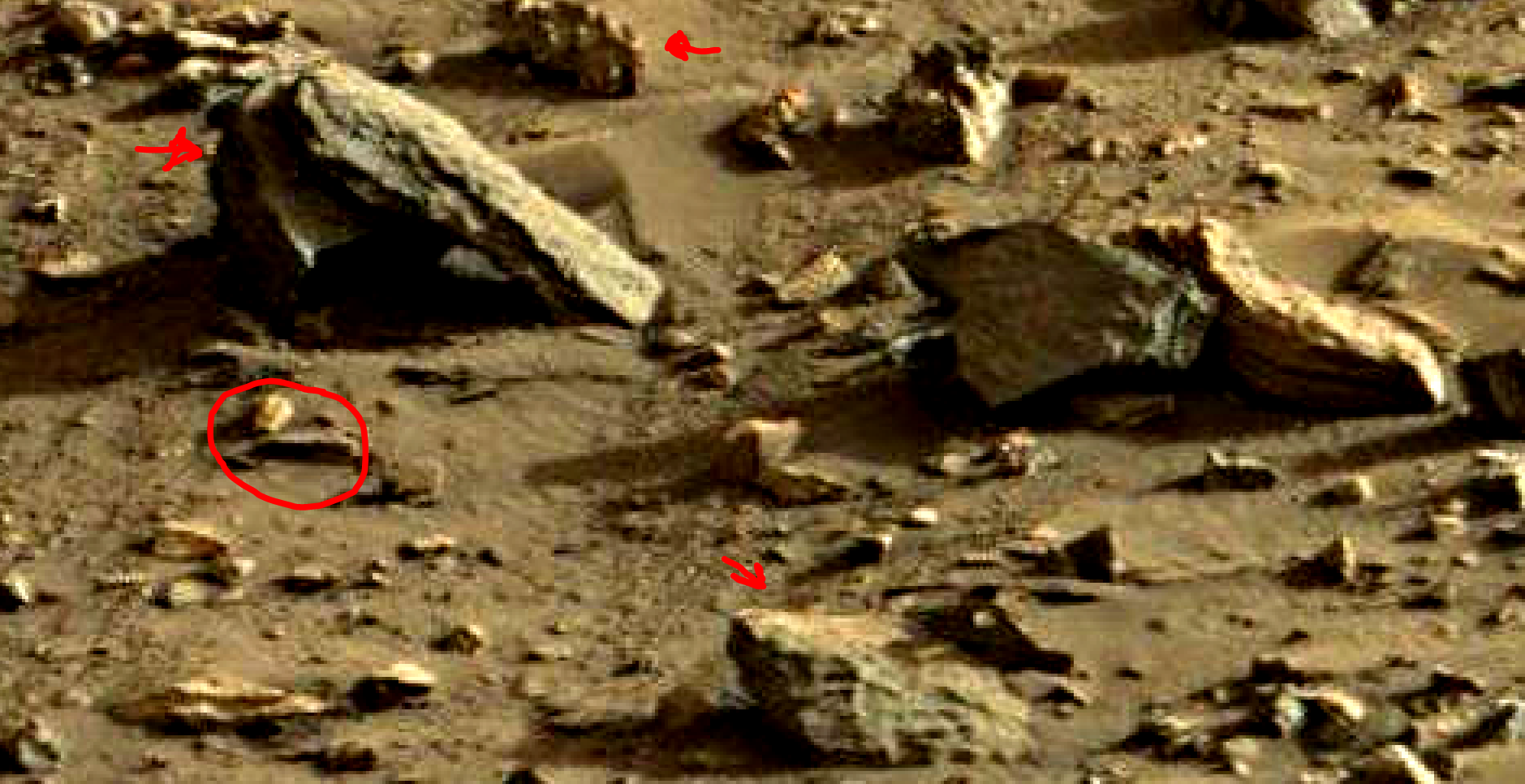 mars sol 1419 anomaly artifacts 12a was life on mars