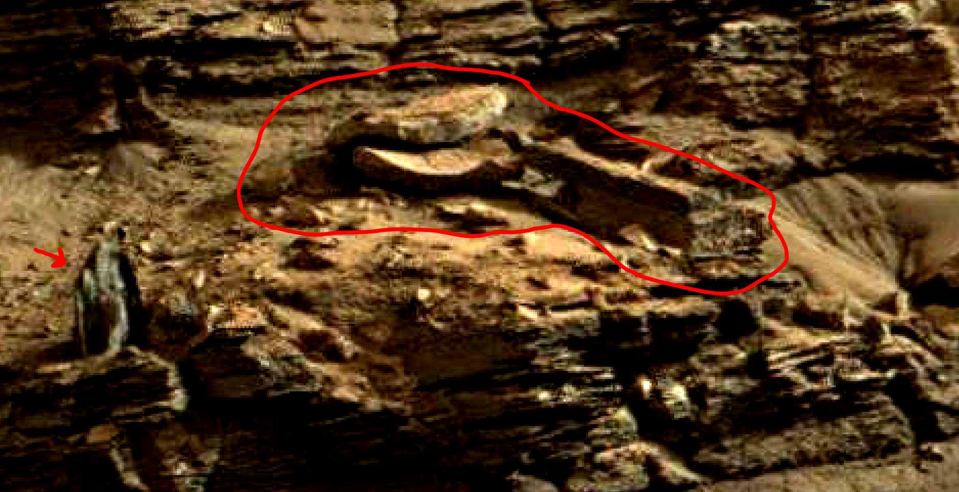 mars sol 1419 anomaly artifacts 13a was life on mars