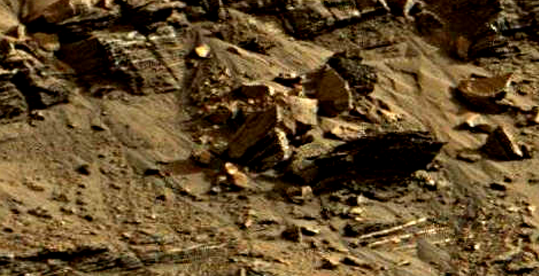 mars sol 1419 anomaly artifacts 15 was life on mars