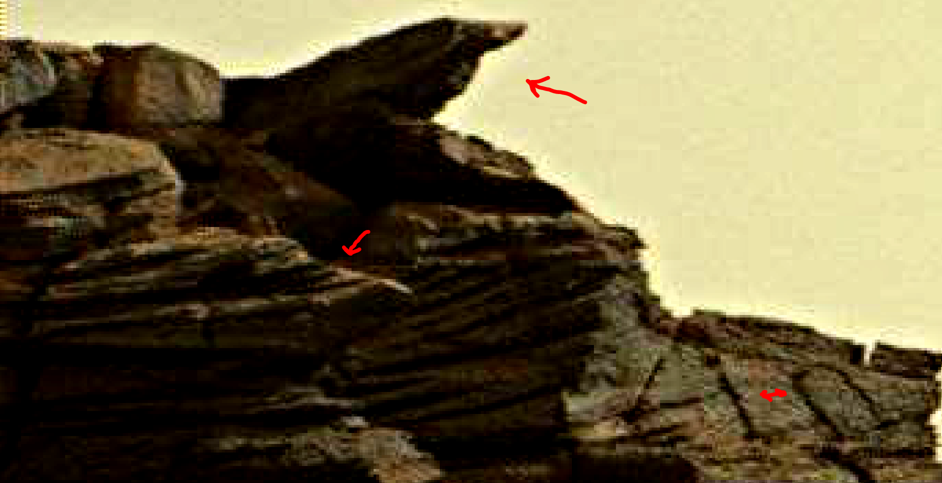mars sol 1419 anomaly artifacts 1aa was life on mars
