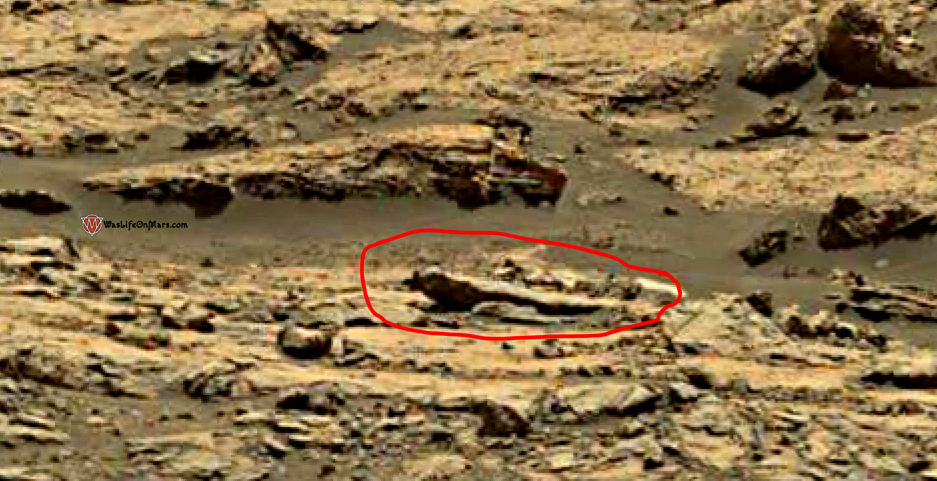 mars sol 1428 anomaly artifacts 3a - the bird - was life on mars