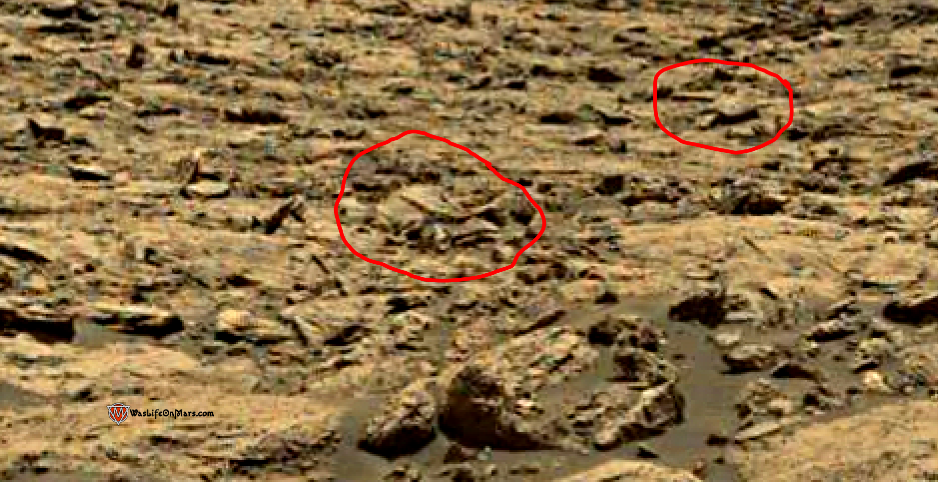 mars sol 1428 anomaly artifacts 3a - the duck - was life on mars