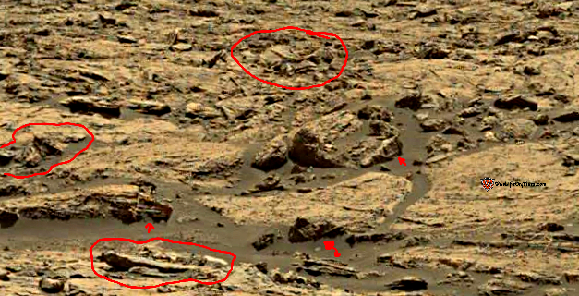 mars sol 1428 anomaly artifacts 3a was life on mars
