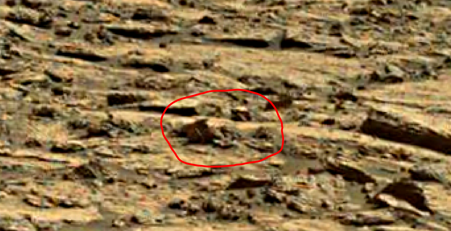 mars sol 1435 anomaly artifacts 1-1b was life on mars