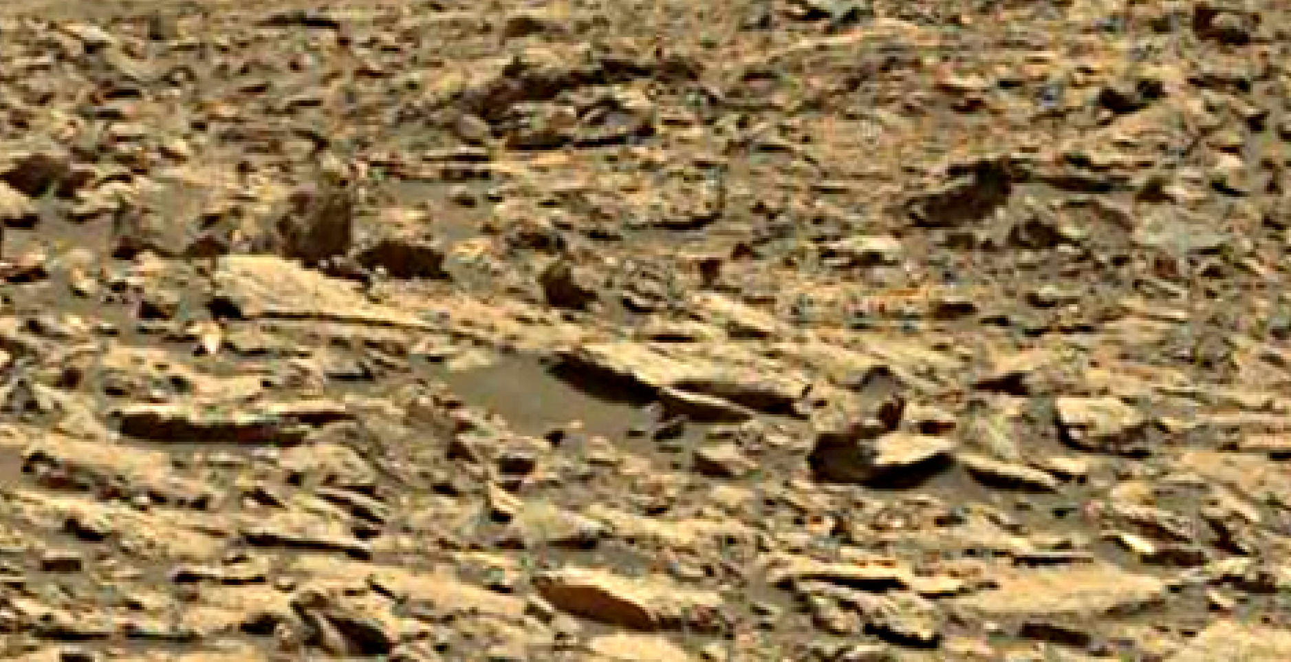 mars sol 1438 anomaly artifacts 3 was life on mars