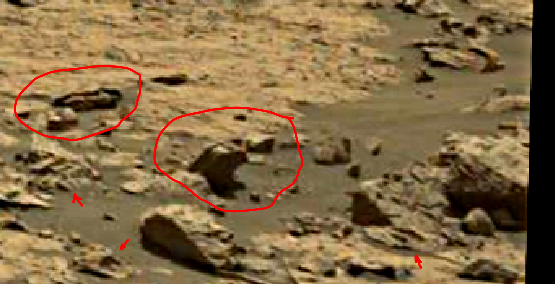 mars sol 1438 anomaly artifacts 4 was life on mars