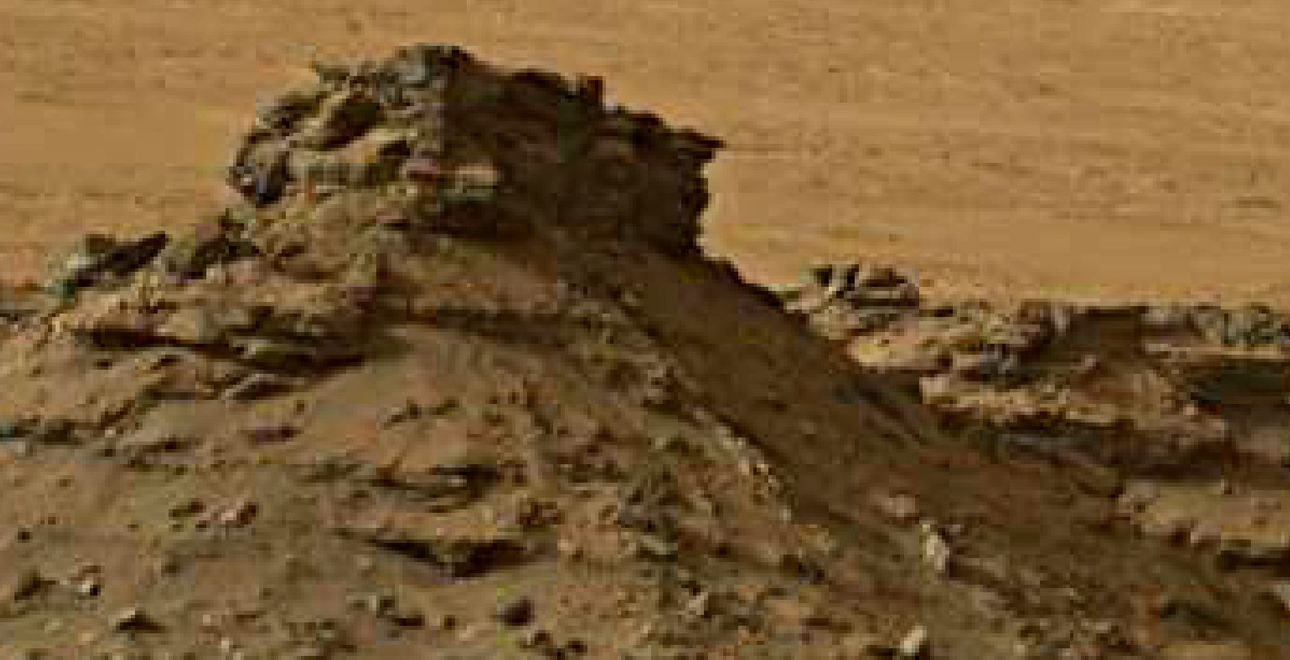 mars sol 1447 anomaly artifacts 2 -bird-plane-butte - was life on mars