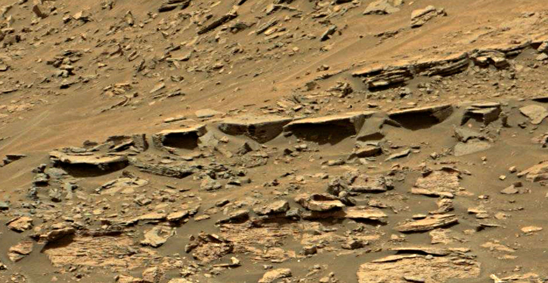 mars sol 1447 anomaly artifacts 5 - was life on mars