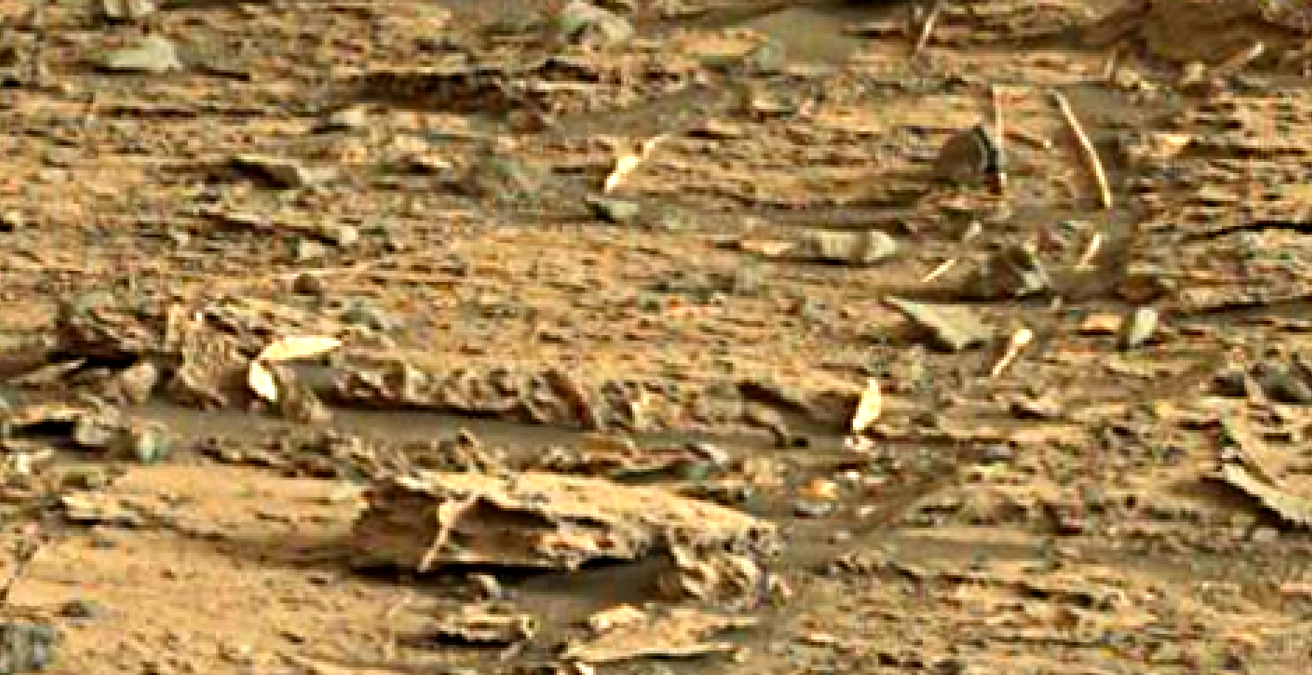 mars-sol-1448-anomaly-artifacts-19-was-life-on-mars
