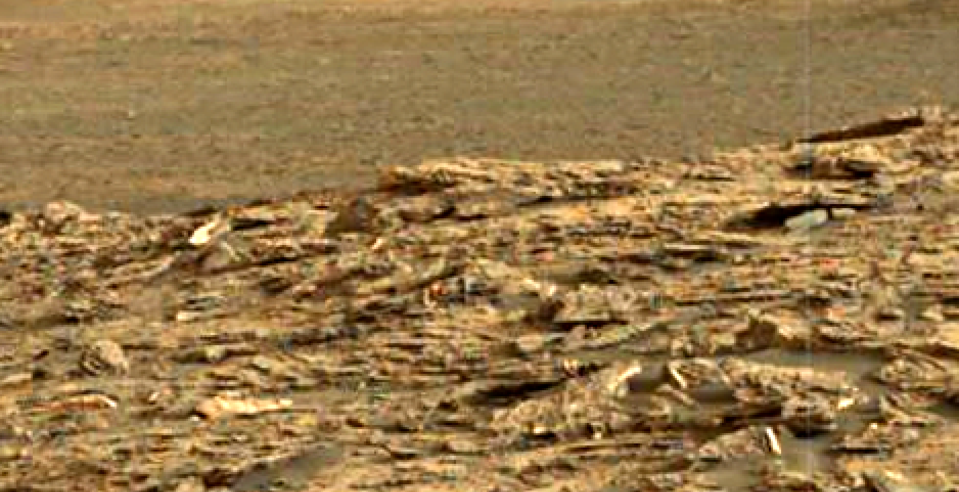 mars-sol-1448-anomaly-artifacts-20-was-life-on-mars