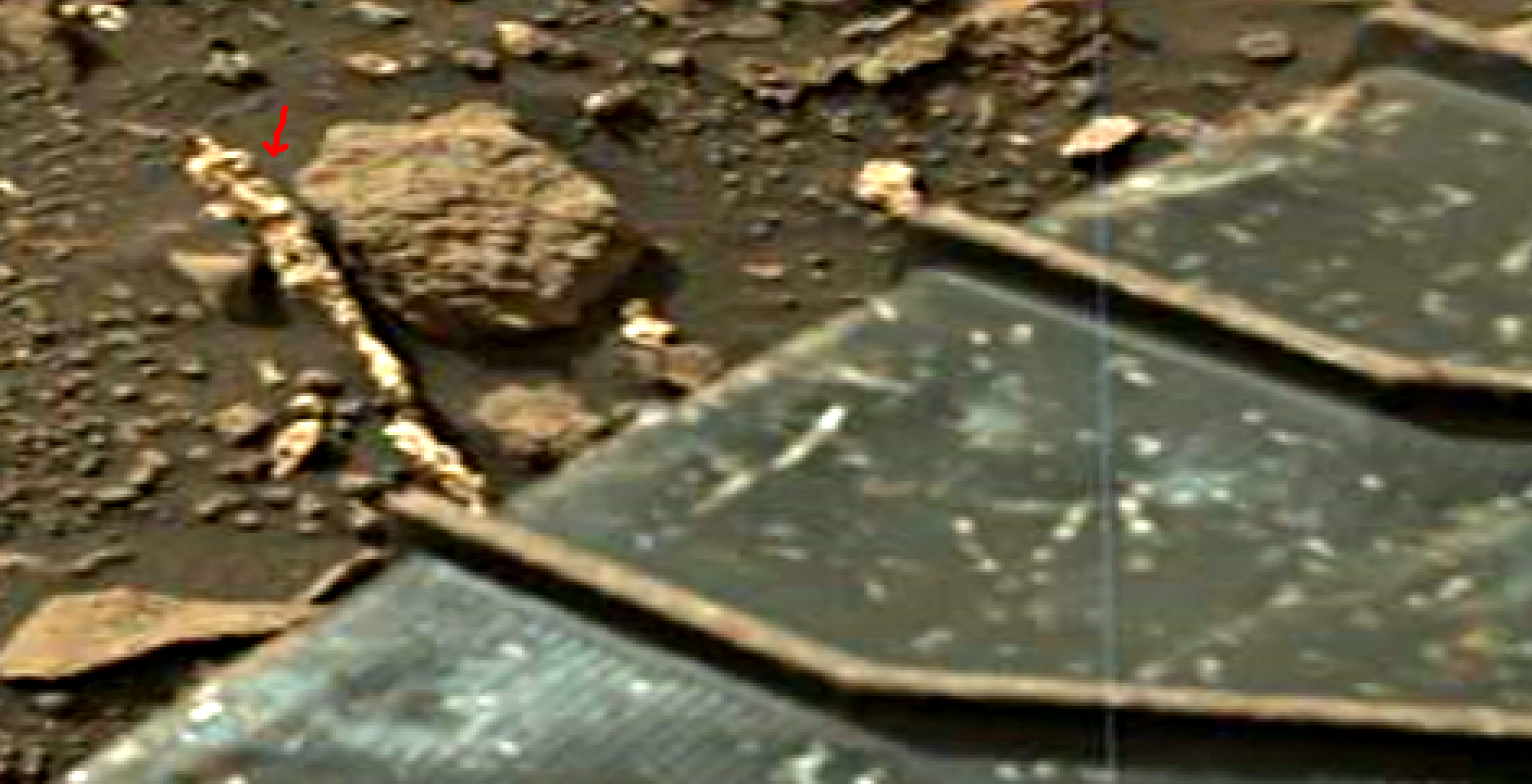 mars-sol-1451-anomaly-artifacts-14-was-life-on-mars