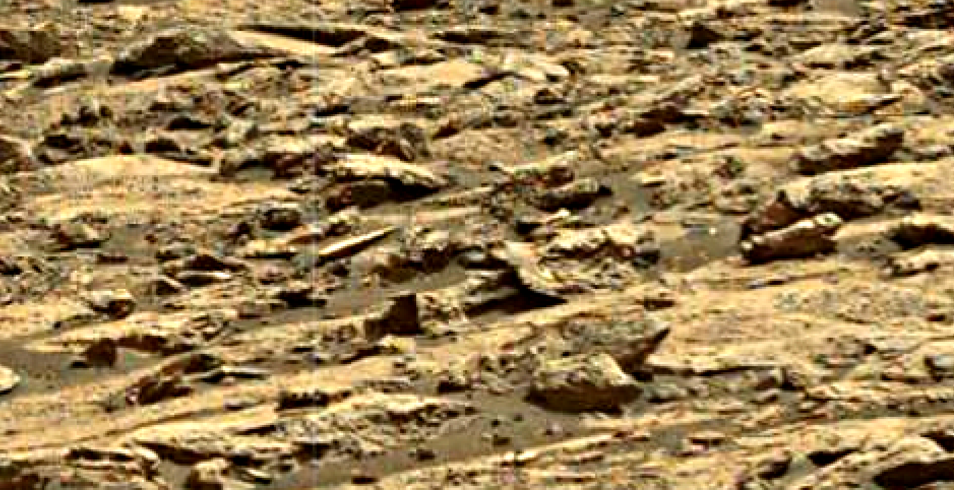 mars-sol-1452-anomaly-artifacts-4-was-life-on-mars