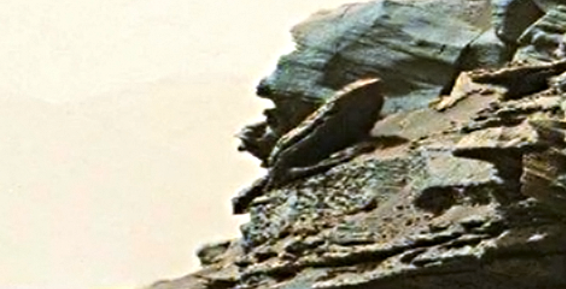 mars-sol-1454-anomaly-artifacts-2abt-was-life-on-mars