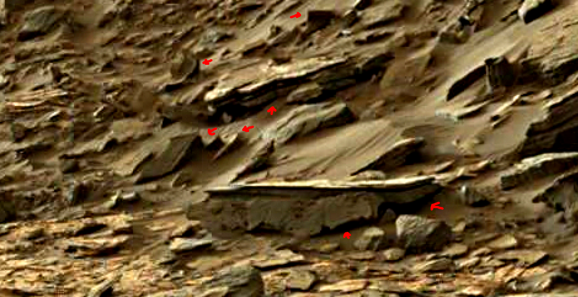 mars-sol-1454-anomaly-artifacts-31-was-life-on-mars
