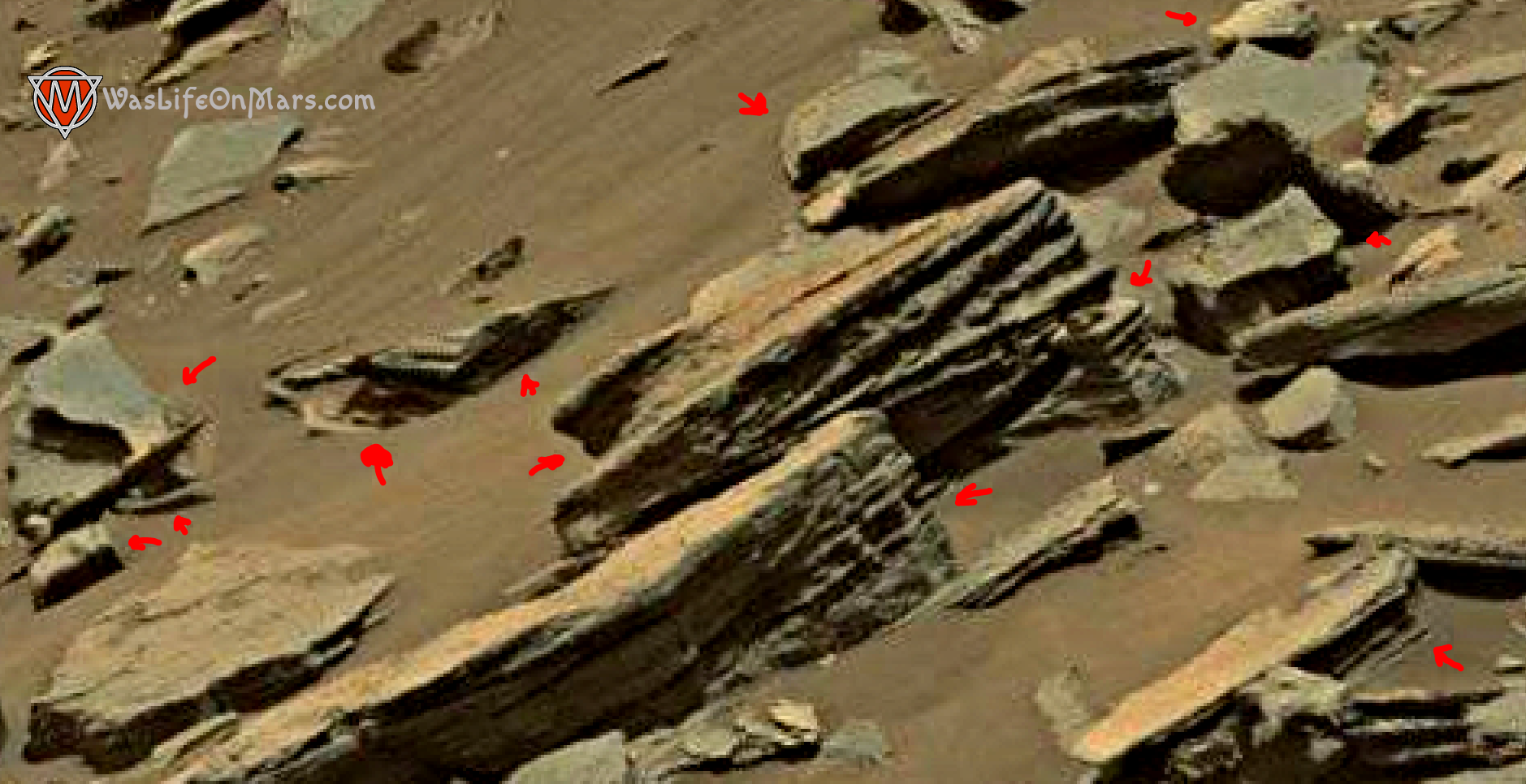 mars-sol-1455-anomaly-artifacts-1a-was-life-on-mars