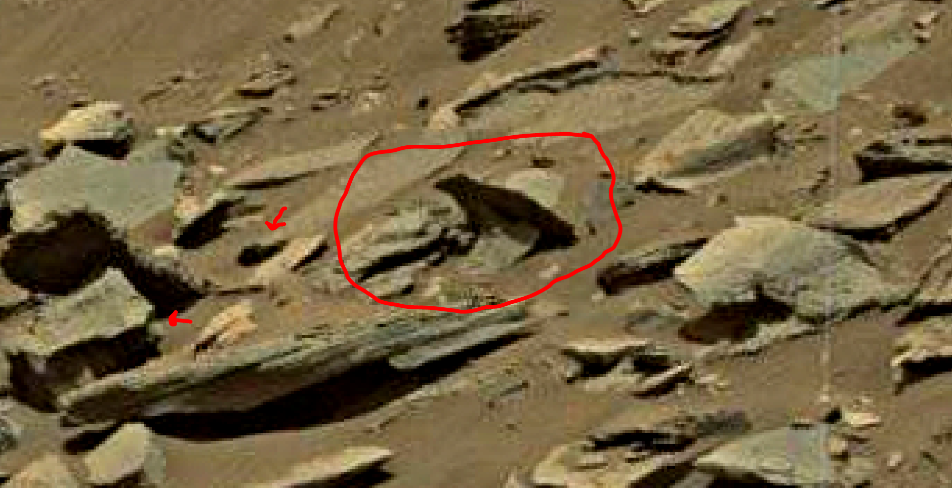 mars-sol-1455-anomaly-artifacts-2a-was-life-on-mars