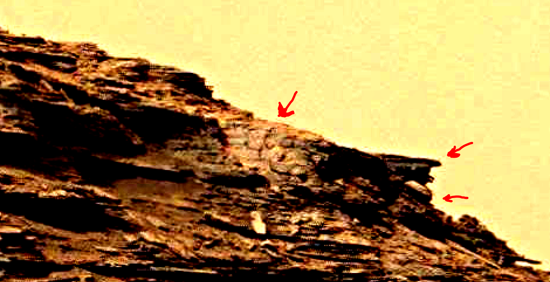 mars-sol-1463-anomaly-artifacts-22a-was-life-on-mars