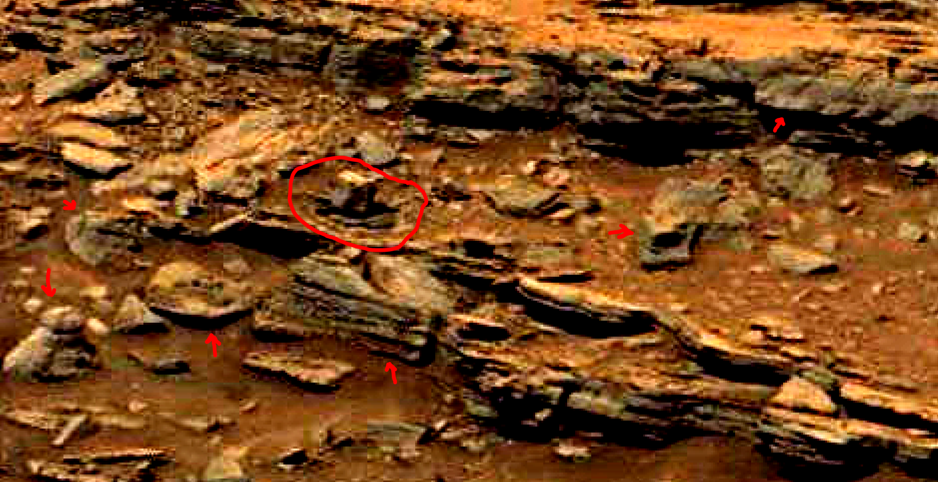 mars-sol-1463-anomaly-artifacts-28-was-life-on-mars