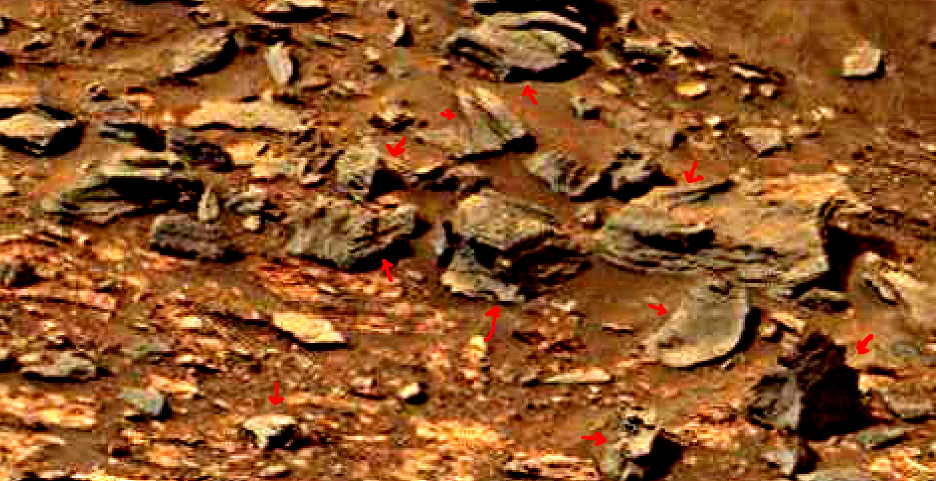 mars-sol-1463-anomaly-artifacts-29-was-life-on-mars